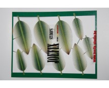 Joefix 250 Palm blad set nr. 1