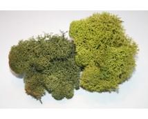 Joefix 121 Basis groen mos