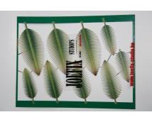Joefix 250 Palm blad set nr. 1